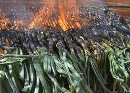 Festa Calçotada — праздник зеленого лука в Каталонии